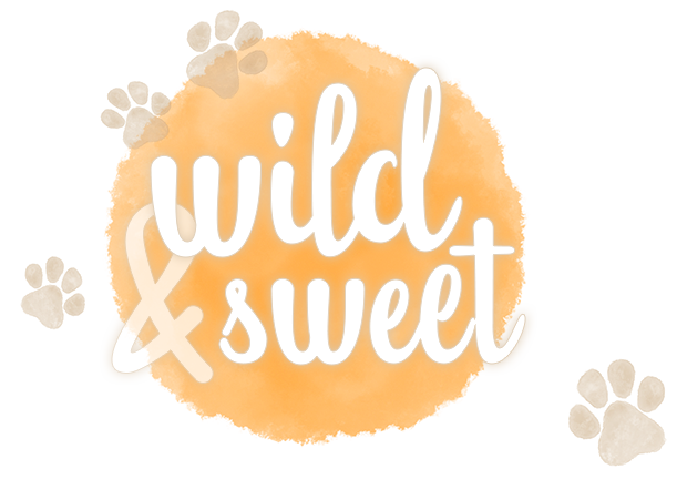 Logo wild&sweet Tierfotografie - Tierfotografie Bremen