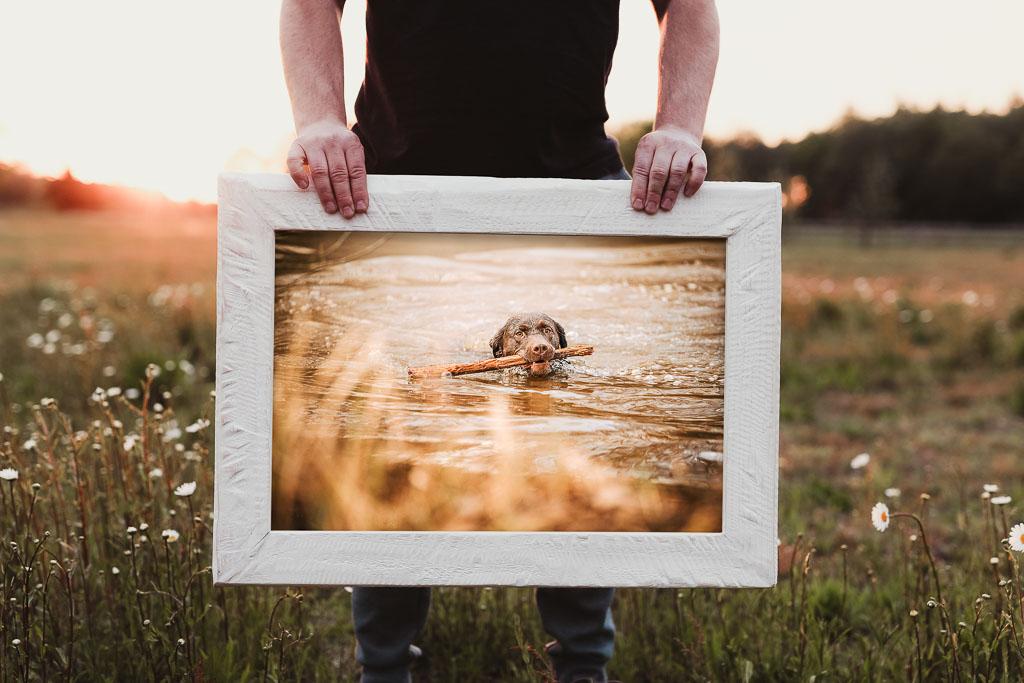 Holzbild mit Hund im weißen Massivhlzrahmen - Bilderrahmen Bremen