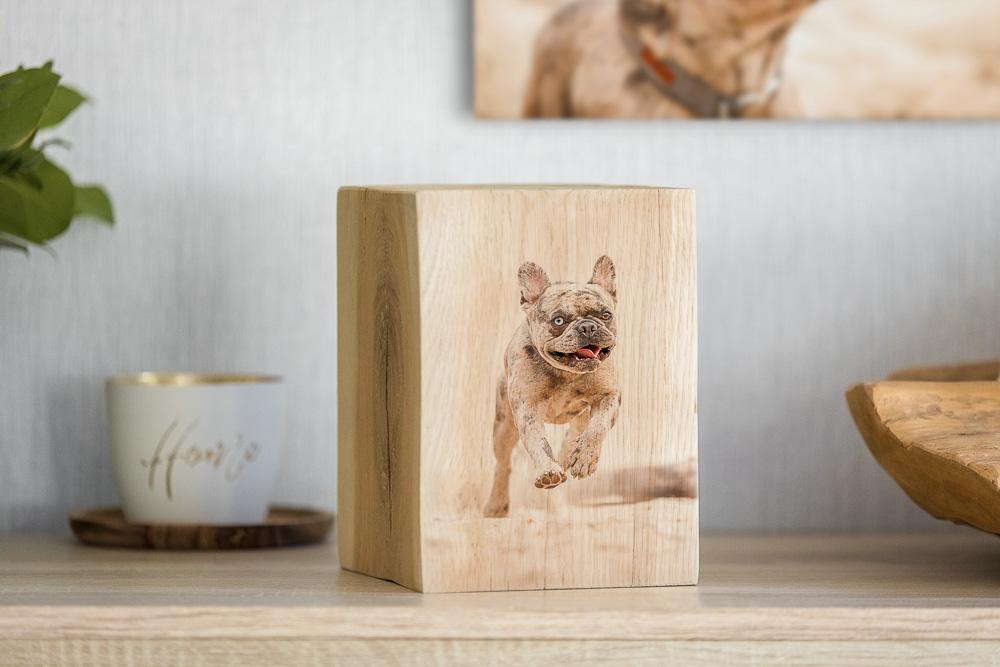 Fotoprodukt auf einer Kommode - Fotobuch Hund