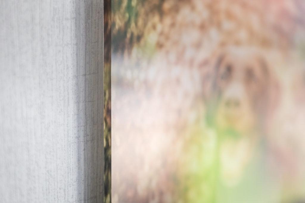 Foto unter Acrylglas Detail von Kante - Wandbild Tier